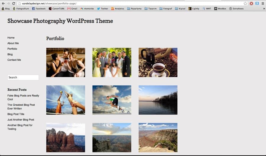 showcase_theme